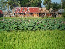 Si Phan Don (4000 Inseln)